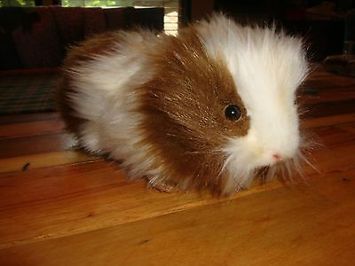 Very Cute Plush Brown And White Soft Long Hair Guinea Pig