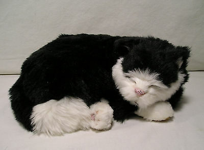 Friends For Life Battery Operated Purring Sleeping Kitty,Black & White Cat Plush