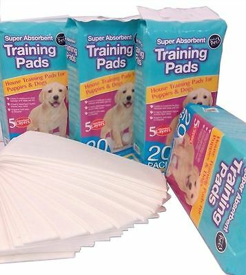 40 X  Dog Puppy House Large Absorbent Training  Pads Toilet Wee 60 X 45Cm New