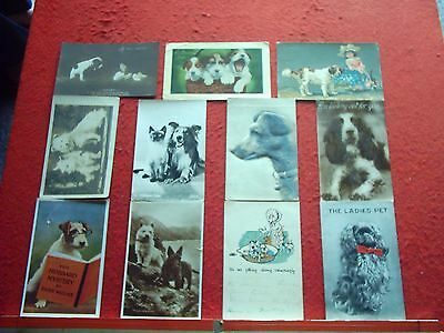 11 Old Postcards Dogs