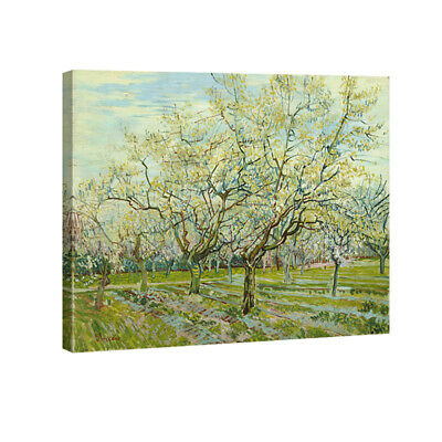 Canvas Print Van Gogh Painting Repro Wall Art Home Decor Green Trees Pic Framed