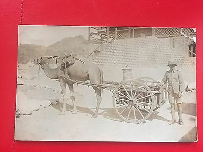 Vintage postcard British soldier alongside camel and cart in INDIA early 1900s