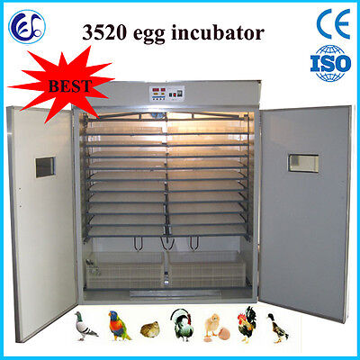 Automatic chicken/goose/duck egg incubator 3520 pcs SEA CUSTOM PICKING