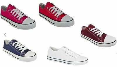 wholesale joblot of BRAND NEW CANVAS TRAINERS immaculate 50 pairs in total