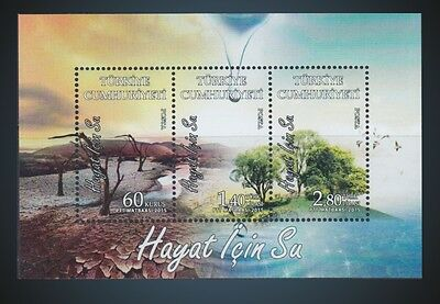 2017 Turkey Environment Climate Change Water Is Life Ecology - Souvenir Sheet