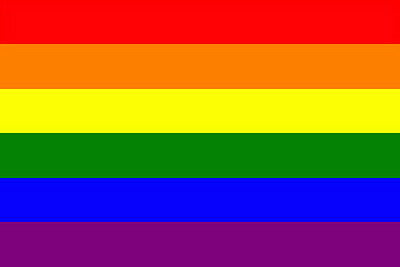 5ft x 3ft Large Polyester Hanging Rainbow Gay Lesbian Flag LGBT Pride