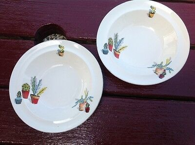Vintage Alfred Meakin Cactus Bowls/Dish x2