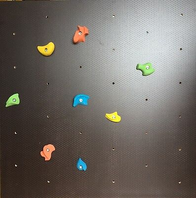 Climbing Wall Panel Complete Kit with Holds and Bolts - Outdoor