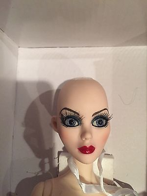 Tonner Evangeline Ghastly ~ Midnight Lace & Roses ~ nude DOLL only, lovely eyes