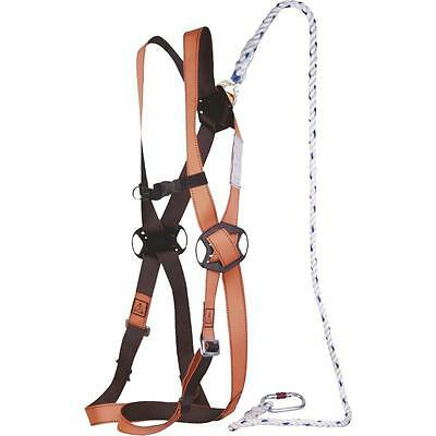 Work Platform Restraint Scaffold Harness Kit Working at Height Ladder