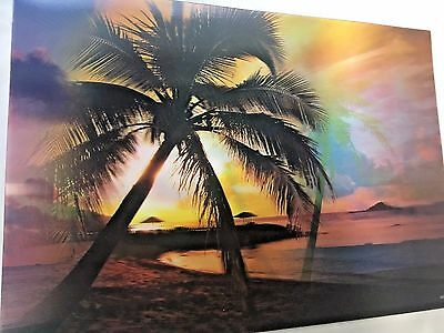 """3D Picture - Palm Trees/Beach/Sunset 13 1/4"""" x 9 1/2"""" NEW FREE SHIP!"""
