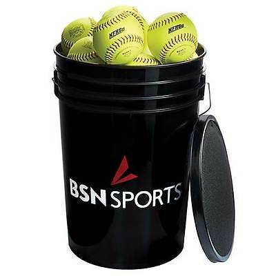 "24 Practice Softballs with free bucket Fastpitch 12"" Brand New"