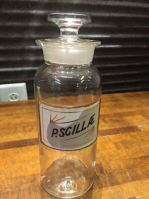 P. Scillae Drug Store Pharmacy Apothecary Label Glass Jar Bottle W Top Medicine