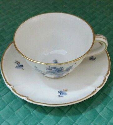 Nymphenburg collectable demitasse cup and saucer Porcelain 1965