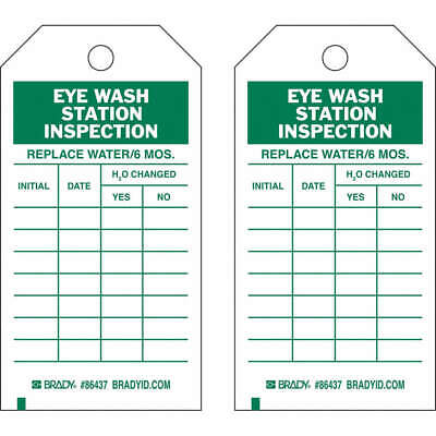BRADY Polyester Inspection Tag,7inHx4inW,HD Poly.,PK10, 86499