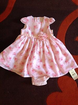 baby girls bundle of new clothing size 6-12 months