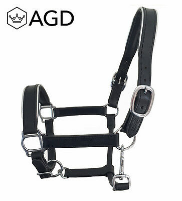 'AGD Silverline' black padded leather halter, SS fittings & silver piping. COB
