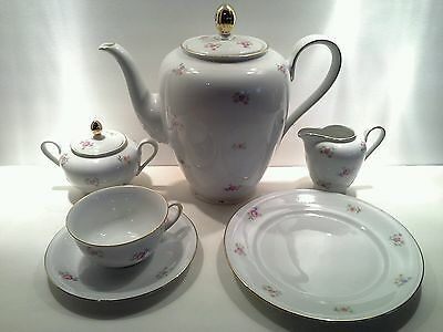 Vintage Bavarian Tea/Coffee 21 Piece Set