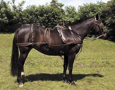 Heavy Duty Breast Leather Carriage Driving Harness Complete Set