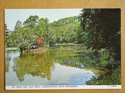Old Postcard Of The Trout Lake, Lake Hotel ,llangammarch Wells, Breconshire