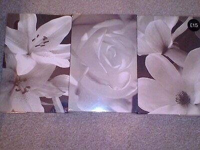 3 wall canvases from next. bn and sealed