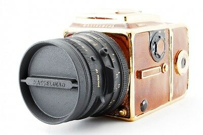 Japanese pottery Hasselblad 503CW by Seto Yaki from Japan #179885