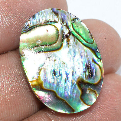 22.80 Ct. NATURAL DESIGNER ABALONE SHELL OVAL SHAPE CABOCHON LOOSE GEMSTONE