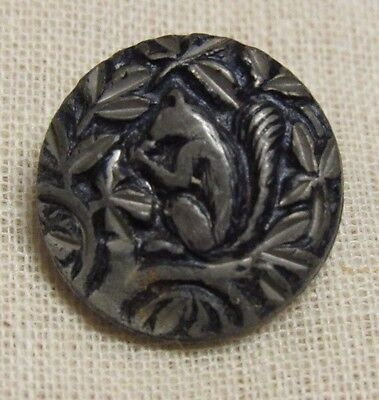 Antique Squirrel In A Tree Scene Button Estate Collection 5/8""