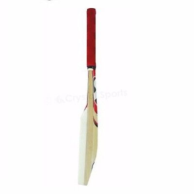 SG Catch Training/Practice Bat