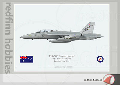 Warhead Illustrated F/A-18F Super Hornet 1 Sq RAAF 212 Op.Okra Aircraft Print