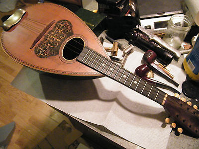 early 1900 American Conservatory 'Doodlebug'  bowl-back  Mandolin /nice project