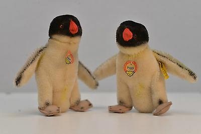 Steiff Peggy Pinguin, Penguin, Knopf, Fahne Tag 4314,07,  TOP Zustand duo pair