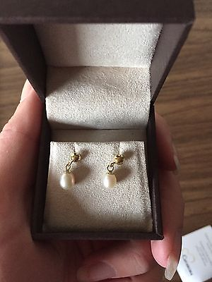 Carissima 9ct Gold Fresh Water Pearl Earrings