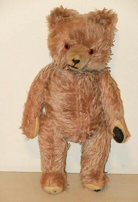 Adorable Old German Bear With Character 1950S - 1960S