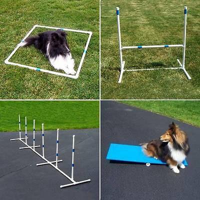 Agility Gear Starter Package - Dog Agility Equipment