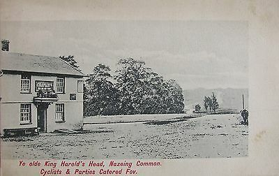 The Old King Harolds Head Nazeing Common Essex Early Pc