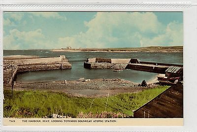 THE HARBOUR, REAY: Caithness postcard (C29062)