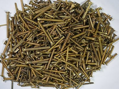7 pounds of old brass slotted flat-head machine screws, assorted sizes