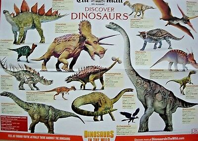 Dinosaur Poster Double Sided Daily Mail Promo Plus Hatch Your Own Baby Dino Egg