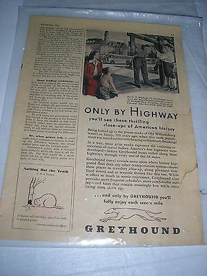 Greyhound OR Tube Patch Advertisement