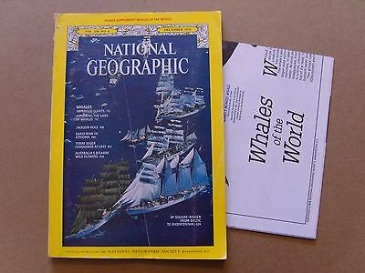 National Geographic Magazine - December 1976 - Whales Of The World Map Included