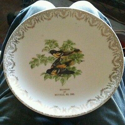 "Vintage Crown Pottery USA SOUVENIR OF MAYVILLE NORTH DAKOTA ND 10"" Plate"