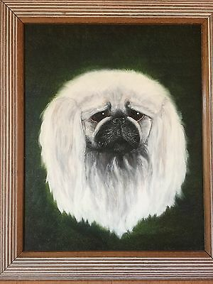 ORIGINAL OIL ON CANVAS  PAINTING OF A RARE WHITE PEKINESE DOG Large 20x14 Inches