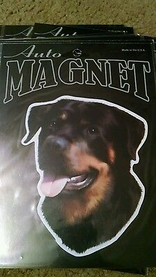 Large Car Magnet ROTTWEILER discontinued CLEARANCE PRICE