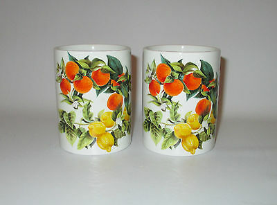 Portmeirion Oranges & Lemons 2 Spice Jars No Lids Susan Williams Ellis England