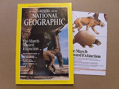 National Geographic Magazine - June 1989 - Dinosaurs Supplement Included