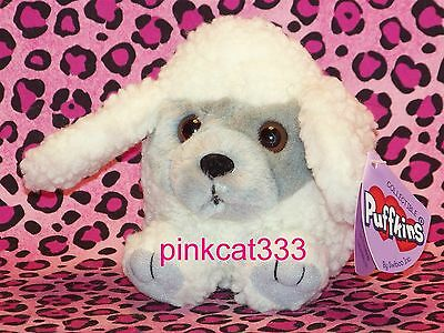SWIBCO PUFFKINS PLUSH WHITE POODLE PUPPY~Fifi #6745~DOB 6-6-00~BEAN BAG~HTF~NWT