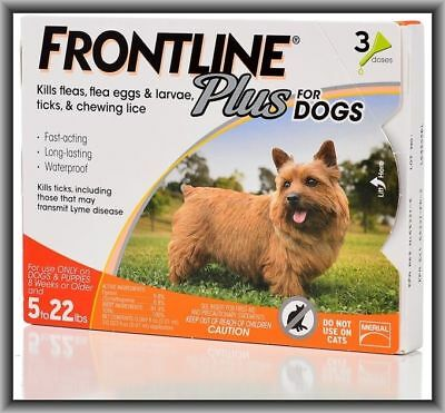 Frontline Plus Flea & Tick Control for Small Dogs 5-22 lbs, 3 Doses Box !