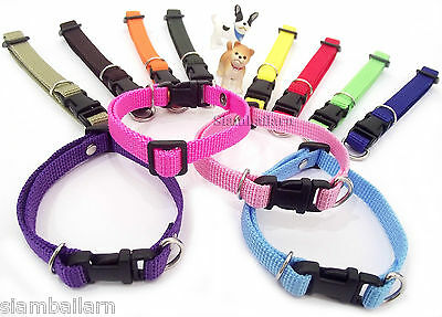 Nylon ID Whelping Collar Small Puppy Pet Dog Adjustable Collars Cat