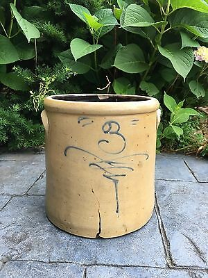 Rare Antique Cobalt Blue Salt Glaze Stoneware Pottery Crock Bee Sting 3 Gallon
